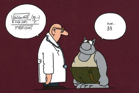 http://a54.idata.over-blog.com/2/23/17/62/images/maths-le-chat.jpg